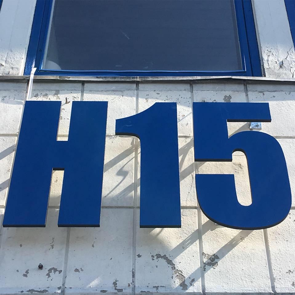 H15 Scene